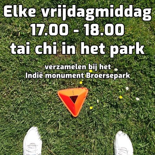 tai_chi_oefenles_park_amstelveen-e5ff1b0ca6c736791dd9fe645e3885fa